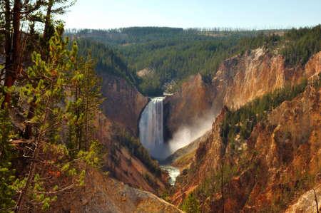 Yellowstone Falls photo