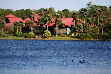 resort2 photo