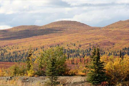 Alaska Country photo