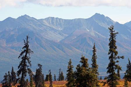 Nature in Alaska photo