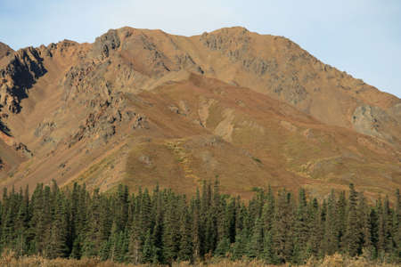 Alaska Mound over Forest photo