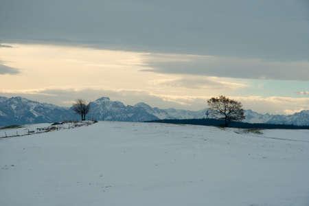 Snowy day Reklamní fotografie