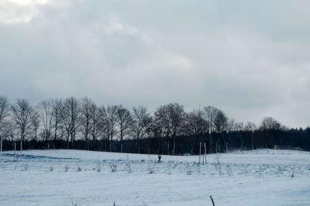 Bavarian Winter photo