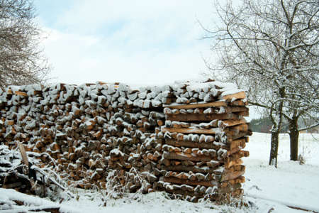 Stacked wood Stock Photo - 2191005