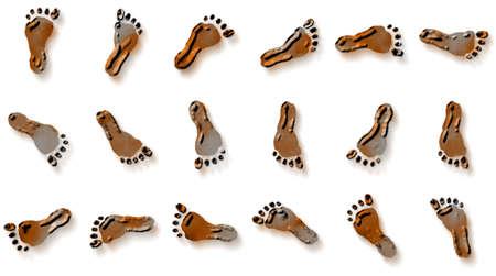 feet Фото со стока