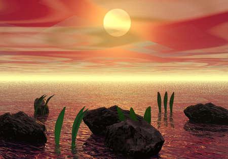Sunset Stock Photo - 2416710