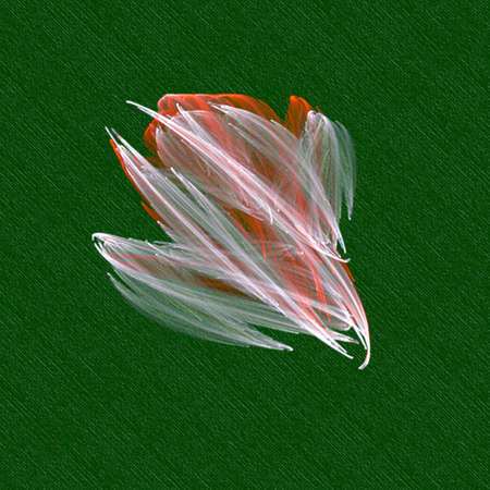 petal: petal