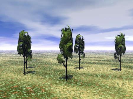 牧草地と木々 写真素材