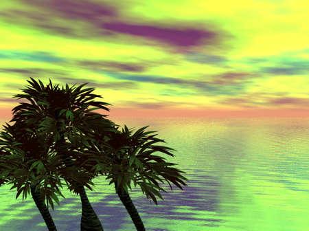 zee en palmen Stockfoto