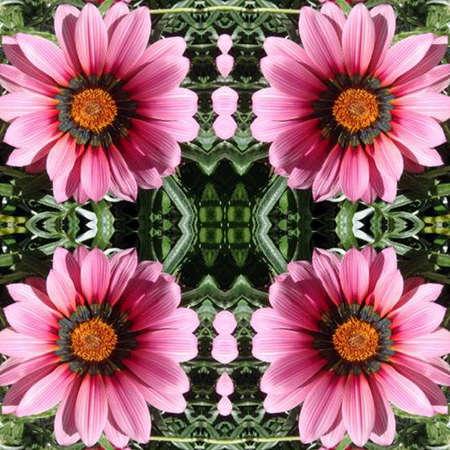 flowered: Flowered Background