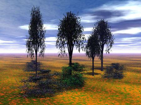 Kleurrijke Landschap