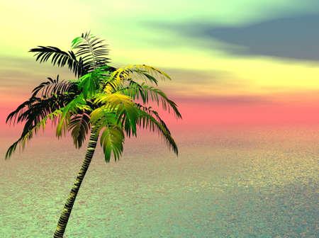 Tropical Scene Stock Photo - 2997774