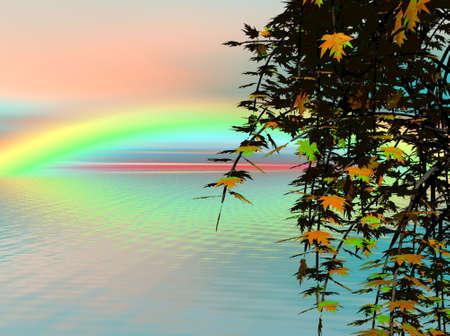 Maple en Rainbow Stockfoto