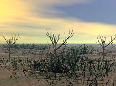 barren: Arid Land