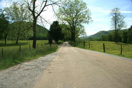 Road through Cades Cove photo