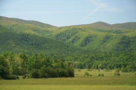smokies: Green Valley