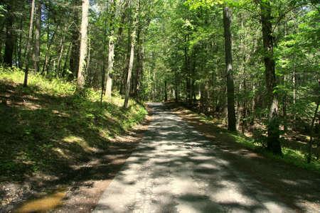 Winding Road photo