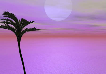 Tropics in Early Evening Stock Photo - 3613866