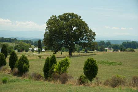 Rural Scene Stock Photo - 3640557