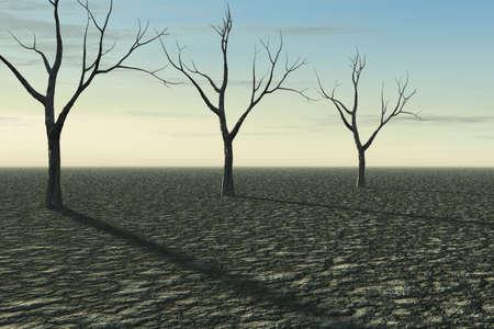 arboles secos: �rboles muertos