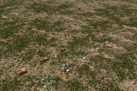 Soil Background photo