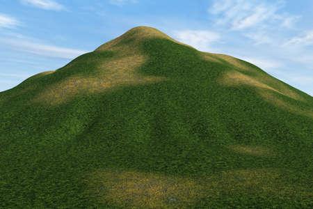 草が茂った丘