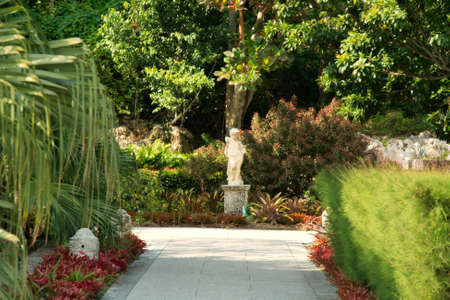Tropical Garden photo