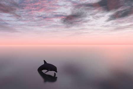 Dolphin and Sea photo