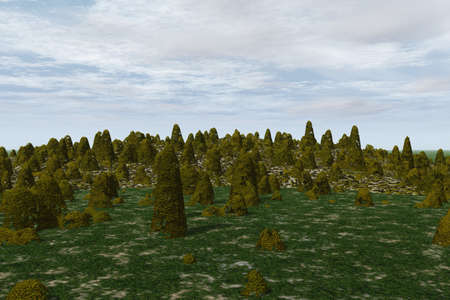 Forest Landscape Stock Photo - 4050031
