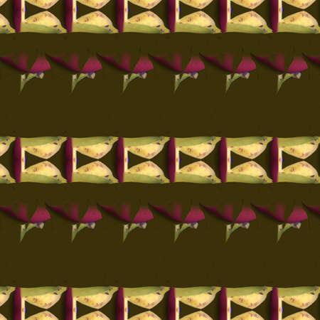 カラフルなパターンと形状