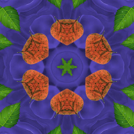 details: Background Patterns