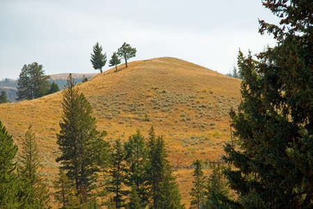 Scenic landscape of Yellowstone Park in early September. Stock Photo - 4479344