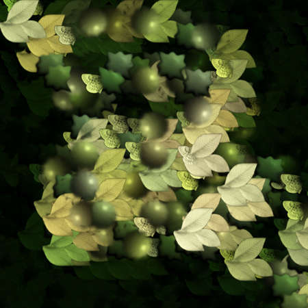Abstract Nature photo
