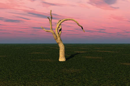 Illustration of a solitary tree against a rosy sky. Stock Illustration - 4604494