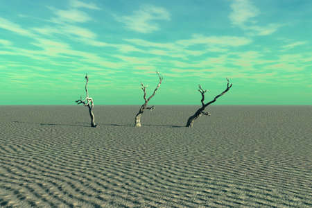 A very desolate scene of desert and dead trees. photo