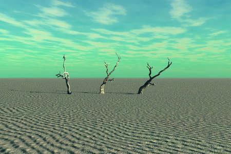 Een zeer desolate plek van woestijn en dode bomen.