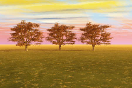 Line of maple trees in a meadow against a vibrant sky. photo