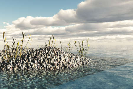 Rock filled edge of beach with numerous water reeds growing. Stock Photo - 4686893
