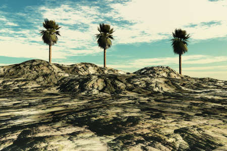 Island with some palm trees and surrounding clouds and sky. Stock Photo - 4705911
