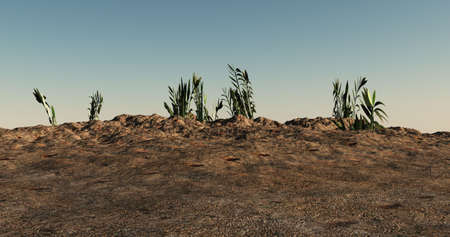 barren: A rocky type landscape with a few green plants at the top of a hill.