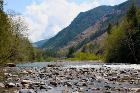 Flowing stream running through the mountains in Washington. Stock Photo - 4898384