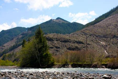 Flowing stream running through the mountains in Washington. Stock Photo - 4898379
