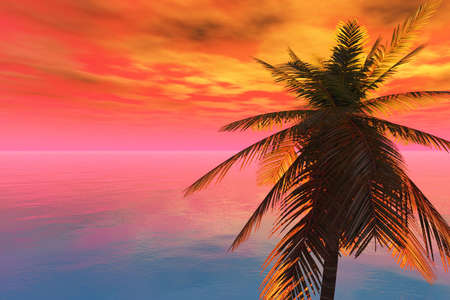 Brilliant sunset at sea with a coconut palm in foreground. photo