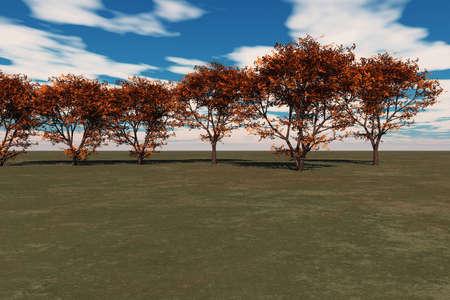 Vibrant autumn maple trees against a blue sky. photo