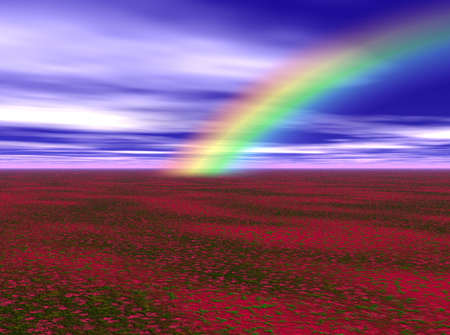 Vibrant rainbow bursting over a field of red flowers.