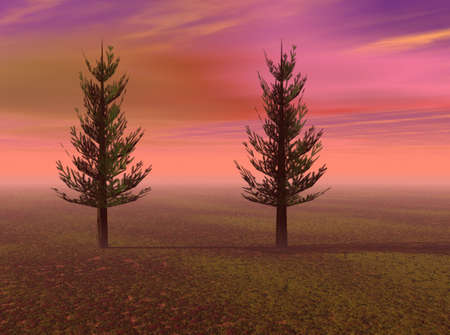 Two pine tree standing against a vibrant red sky. Stock Photo - 5056375