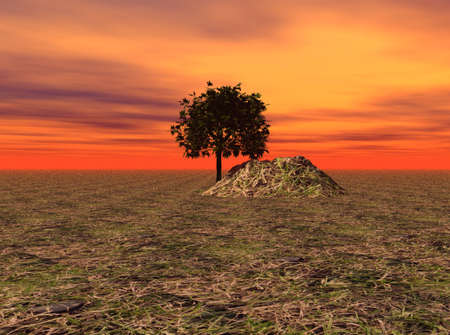 Vibrant sky over a tree and small hill in a rural setting. photo