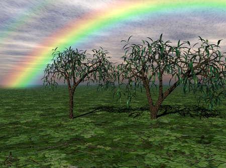 Colorful rainbow over trees in a rural landscape. Archivio Fotografico
