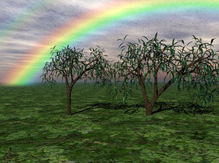 romantic: Colorful rainbow over trees in a rural landscape. Stock Photo