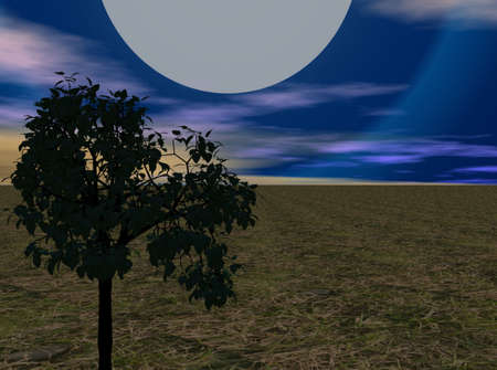 Full moon over a meadow in night scene. Stock Photo - 6332288